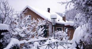 alveari sotto la neve