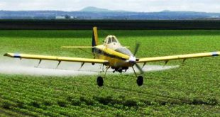 Pesticidi irrorati sui campi