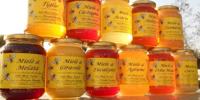 Barattoli di miele di diverso tipo