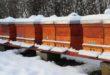 Tempo di invernamento: I'ultima operazione in apiario della stagione