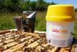 Varroa Easy Check (VEC)