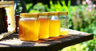 Miele: il rischio delle contraffazioni